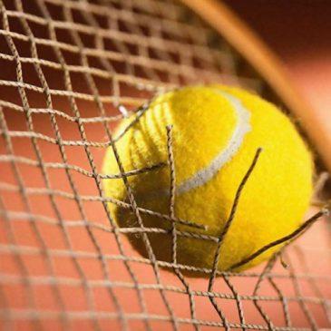 Vade-mecum of the tennis racket